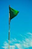 Zielona flaga w wiatrze Zdjęcie Royalty Free