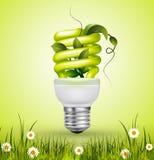 Zielona flourescent żarówka z liśćmi Zdjęcia Royalty Free