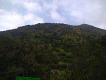 Zielona góra Zdjęcia Stock