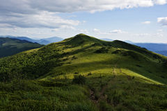 zielona góra Fotografia Stock