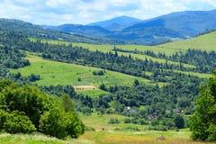 zielona góra krajobrazowa Obrazy Stock