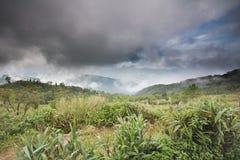 Zielona góra, Tajlandia Fotografia Stock