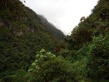 Zielona góra z drzewami pod niebem Zdjęcie Royalty Free