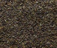 zielona herbata tło Fotografia Stock