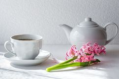 Zielona herbata w białym kubku czajnika odosobniony biel zdjęcia royalty free