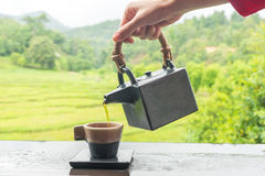 Zielona herbata w filiżance i teapot Zdjęcie Royalty Free