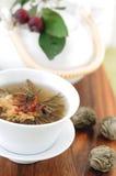 zielona herbata wiązał Obrazy Royalty Free