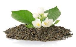 Zielona herbata z liściem i kwiatami jaśmin Zdjęcia Stock