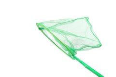 Zielona insekt sieć na białym tle Zdjęcia Stock