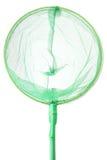 Zielona insekt sieć na białym tle Zdjęcia Royalty Free