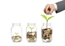 zielona inwestycja obrazy stock