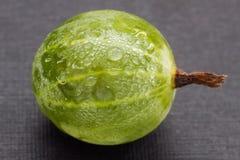 Zielona jagoda agrest na czarnym tle, makro- fotografia, świeżość zdjęcia stock