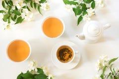 Zielona jasmin herbata i jaśminowi kwiaty, filiżanka zielona herbata na bielu Odgórny widok teatime Zdjęcia Stock
