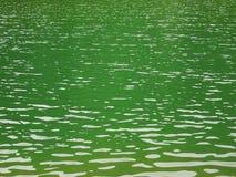 zielona jeziora wody Obrazy Stock