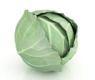 Zielona kapusta ilustracji