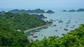 Zielona kotów półdupków wyspa w Północnym Wietnam obraz stock