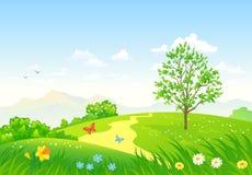 zielona krajobrazowa wiosna Zdjęcie Royalty Free