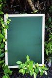 Zielona kredowa deska umieszczająca na ziemi Fotografia Stock