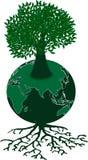 Zielona kula ziemska i drzewo Obraz Royalty Free