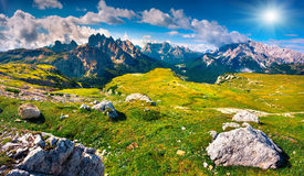 Zielona lato scena w parku narodowym Tre Cime Di Lavaredo Zdjęcie Stock
