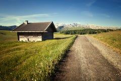 Zielona lato ziemia uprawna Zdjęcia Stock
