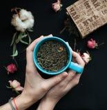 Zielona liść herbata rozlewająca na stole Zdjęcie Stock