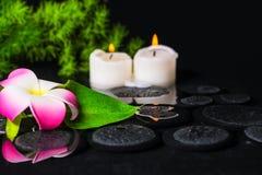 Zielona liść kalii leluja, plumeria z kroplami i świeczki na zen st, Obraz Royalty Free
