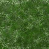 Zielona liść tekstura Zdjęcia Royalty Free