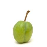 zielona śliwka Fotografia Stock