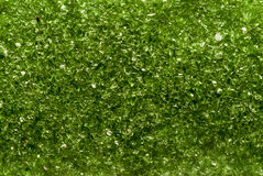 Zielona mikowa tekstura Fotografia Stock