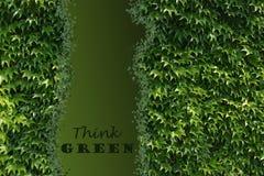 zielona myśl Fotografia Stock
