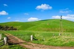 Zielona nabiał ziemia uprawna Obrazy Stock