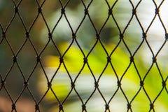 Zielona nylonowa sieć rybacka Zdjęcia Royalty Free