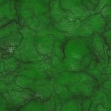 Zielona Obca skóra Zdjęcia Stock