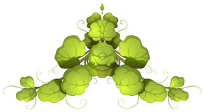 Zielona obfitolistna roślina Zdjęcia Stock