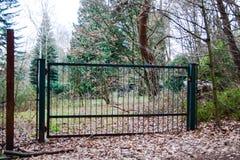 Zielona Ogrodowa brama Obraz Stock