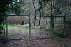Zielona Ogrodowa brama Zdjęcie Royalty Free