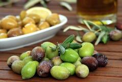 zielona oliwka Zdjęcia Stock