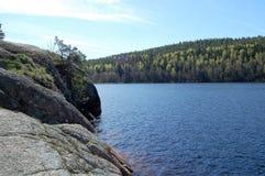 Zielona paleta natura zdjęcia royalty free