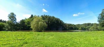 zielona panorama Zdjęcie Royalty Free