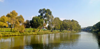 Zielona parkowa rzeka Fotografia Royalty Free