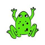 Zielona piękna jaskrawa pełen wdzięku żaba ilustracja wektor
