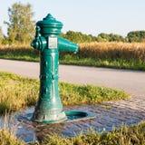Zielona pije fontanna na trawie w południowym Niemcy Fotografia Stock