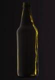 Zielona piwna butelka obrazy royalty free