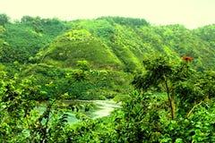 Zielona plaża, Maui Obraz Royalty Free