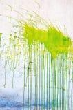 zielona plama obrazy stock