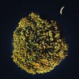 Zielona planeta w kosmosie royalty ilustracja