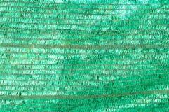 Zielona podcieniowanie sieć nad małym roślina domem Obrazy Stock
