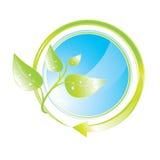 zielona pojęcie ikona ilustracja wektor