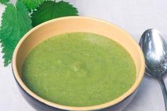 Zielona pokrzywowa polewka w pucharze Obrazy Stock